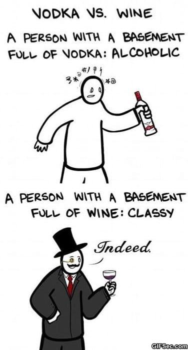 funny-pictures-vodka-vs-wine