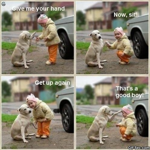 Good boy meme lol humor funny pictures funny photos funny