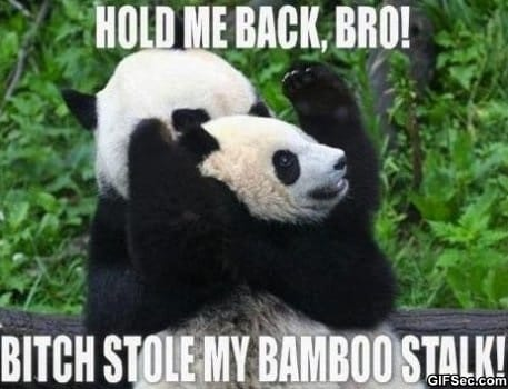 hold-me-back-bro