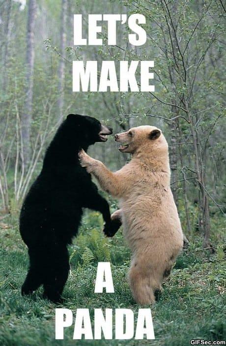 how-to-make-a-panda