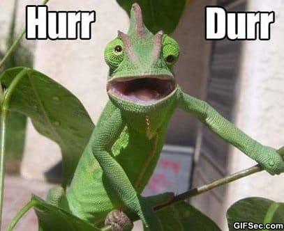 hurr-durr