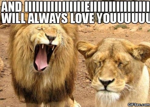 Karaoke meme lol humor funny pictures funny photos funny