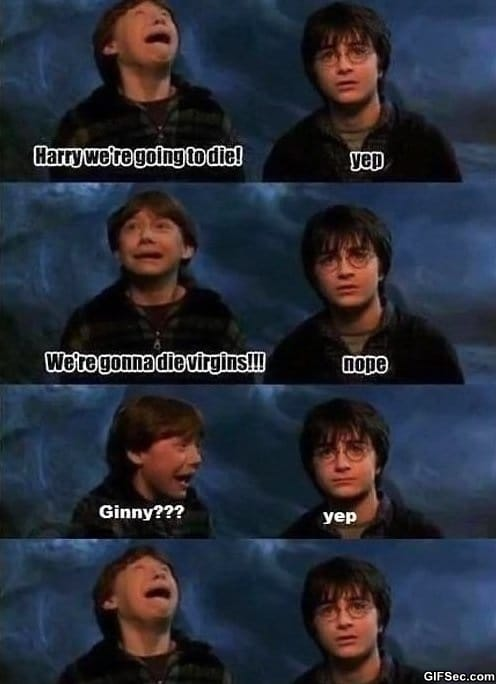 lol-harry-potter