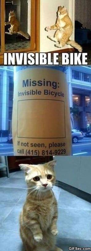 lol-invisible-bike