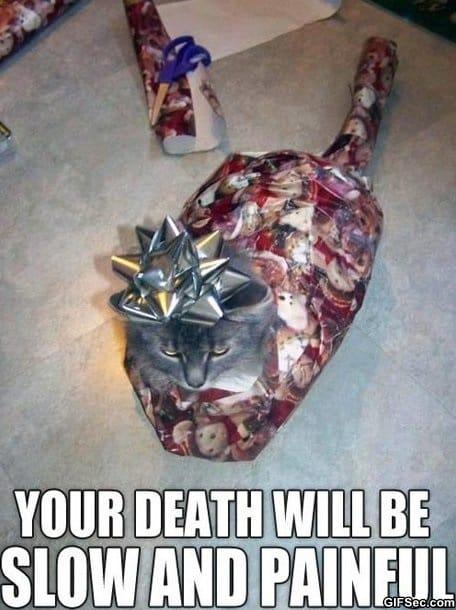 meme-angry-christmas-kitty