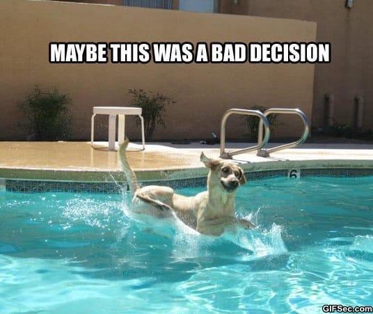 meme-bad-decision