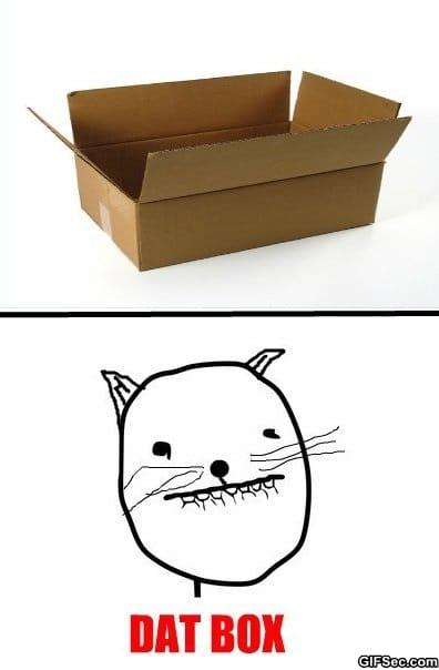 meme-cat-logic