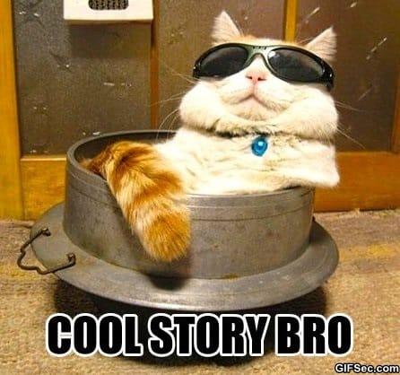 meme-cool-story-bro