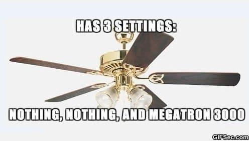 meme-fan