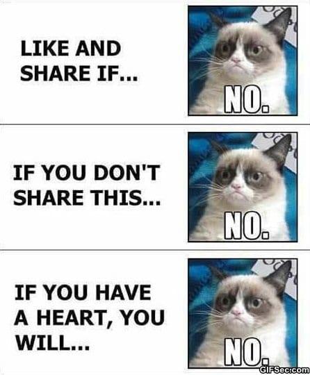 meme-grumpy-cat-vs-facebook
