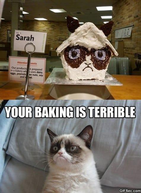 meme-grumpy-gingerbread-house