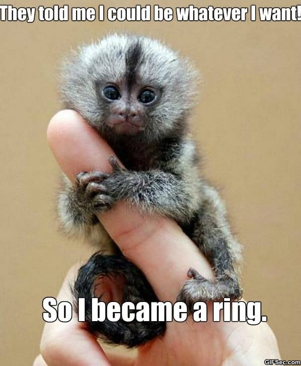 meme-monkey-ring
