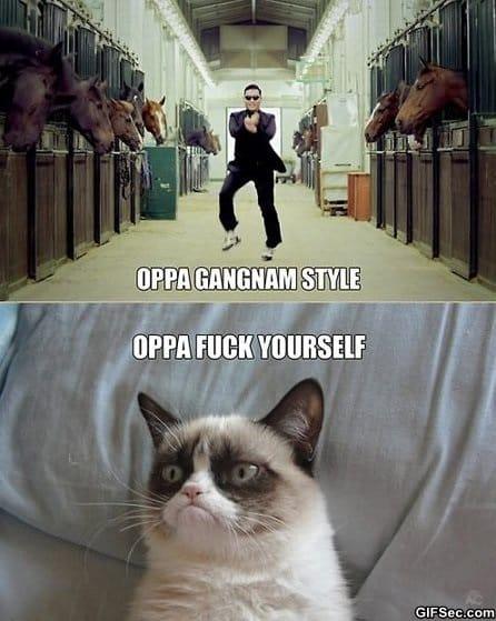 meme-oppa-grumpy-cat-style