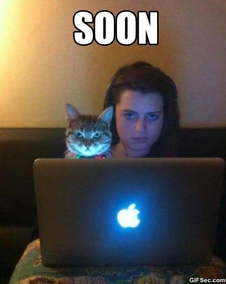 meme-soon