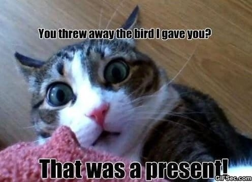 meme-the-present