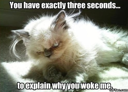 me-in-the-mornings