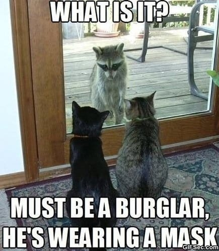 must-be-a-burglar