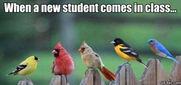 new-students