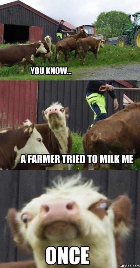 once-meme