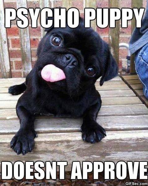 psycho-puppy