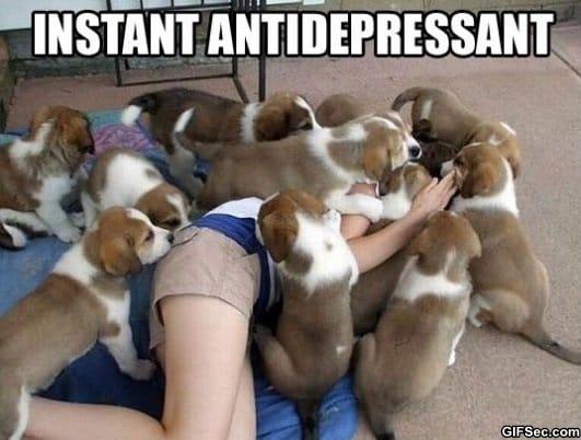 the-best-antidepressant