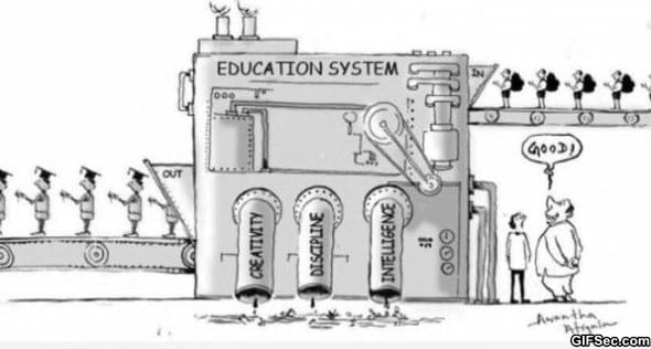 the-education-system