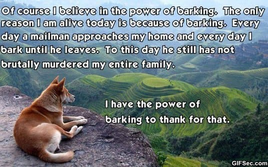 the-power-of-barking