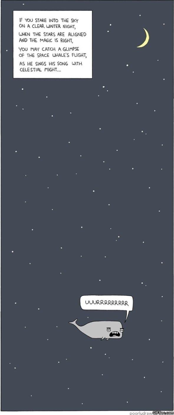 the-stars