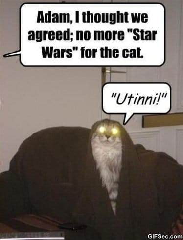 too-much-star-wars