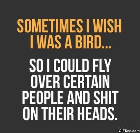 true-that