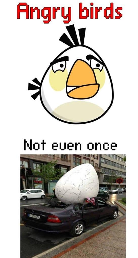Funny angry bird memes - photo#7