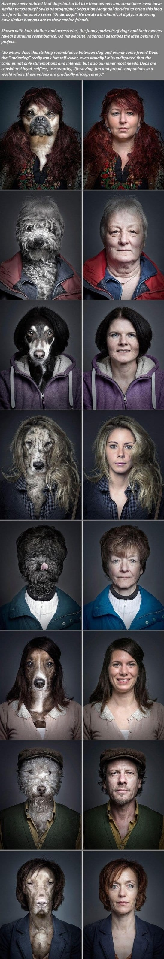 funny-dogs-looking-exactly-like-their-owners-meme