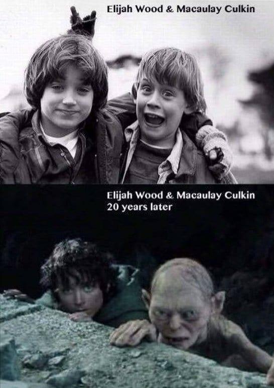 funny-elijah-wood-and-macaulay-culkin-memes