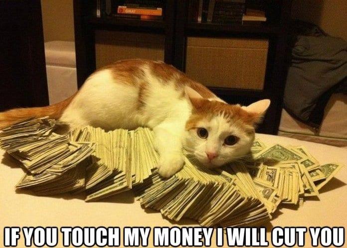 funny-gangsta-cat-meme-lol