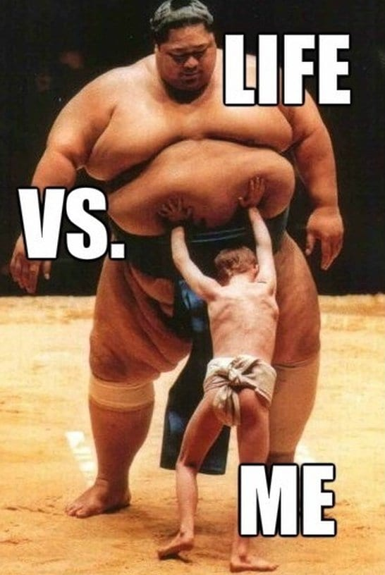 funny-life-vs-me-funny-pictures-meme-jokes