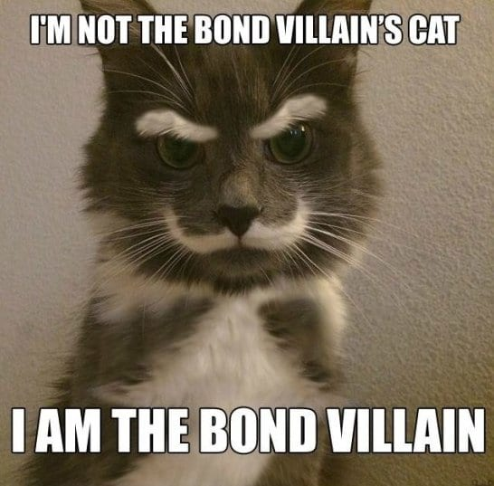 funny-meme-pictures-bond-villain-memes