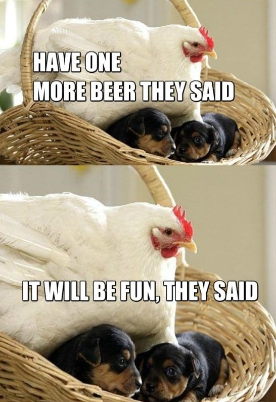 funny-meme-pictures-girls-at-parties-memes