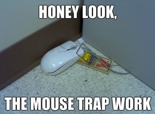 days ago http meme lol com funny funny meme pictures mouse trap memes