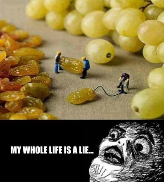 funny-my-whole-life-is-a-lie-jokes