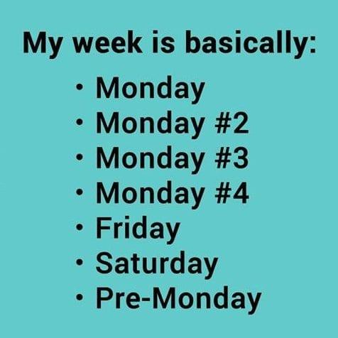 funny-my-week-meme-2014