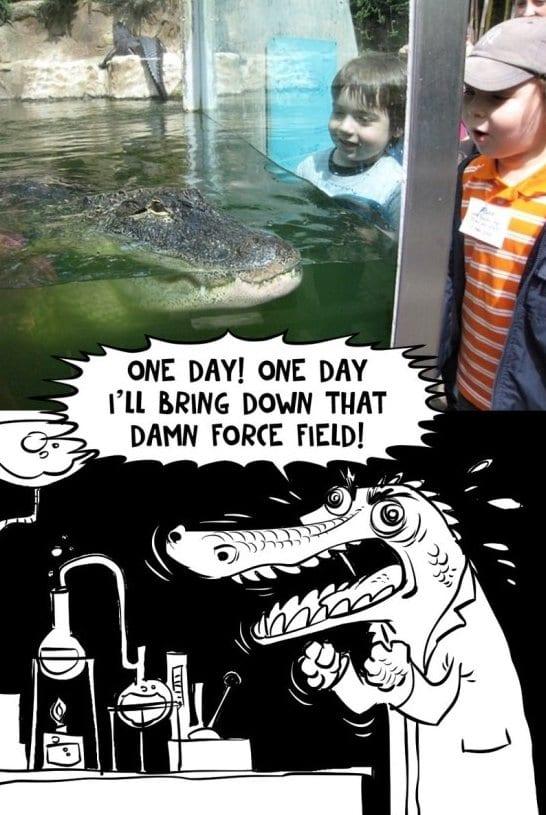 Funniest Memes November 2014 : Funny one day meme jokes