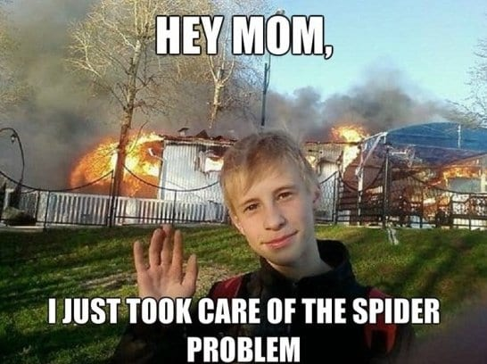 funny-pictures-kill-the-spider-with-fire