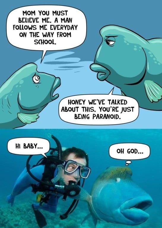 funny-stalkers-meme