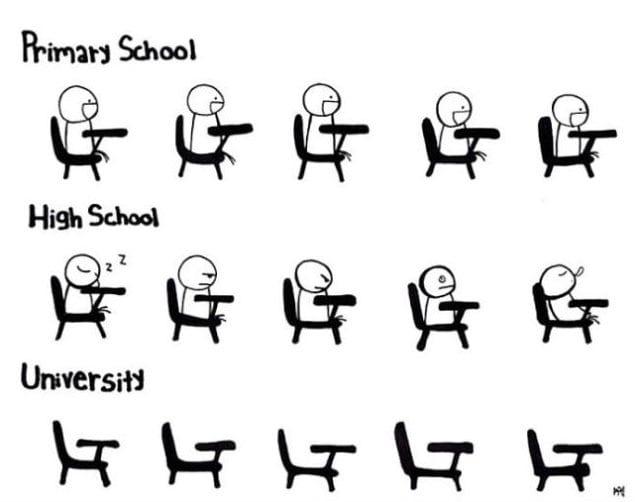 funny-image-2014-primary-vs-high-school-vs-university-lol