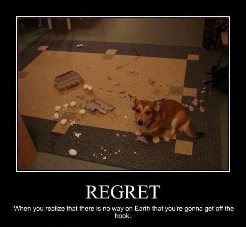 regret-meme-lol-2014
