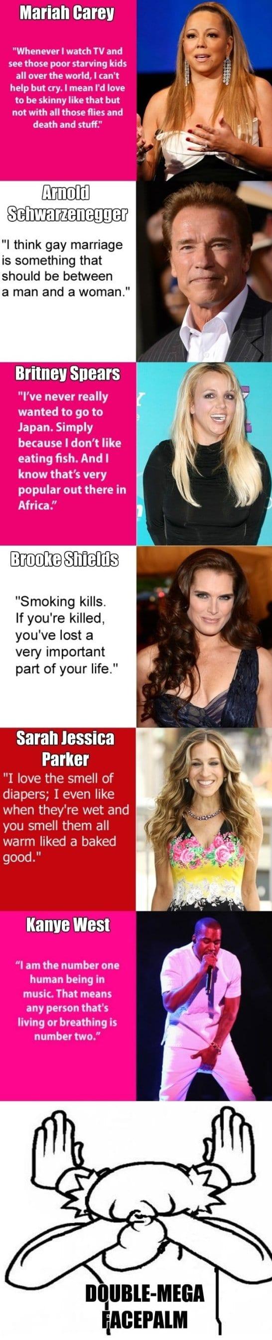 best-joke-2014-dumb-celebrity-quotes