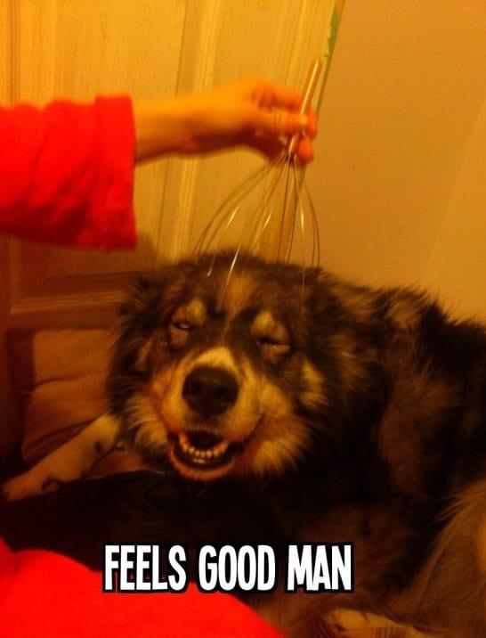 best-meme-feels-good-man