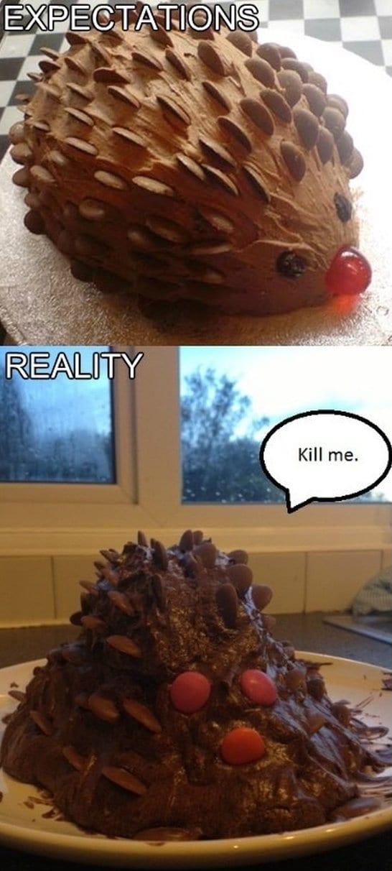 best-meme-hedgehog-cake