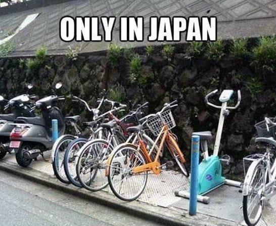 best-meme-only-in-japan