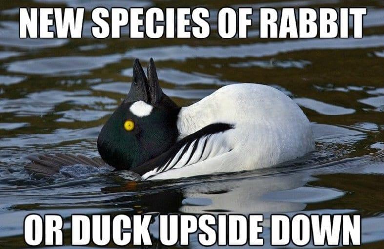 Top Funny Meme Websites : Best memes mindfork